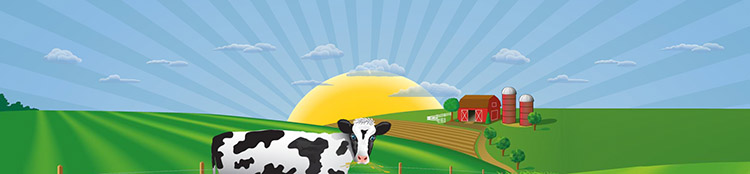 CDL Class A or B Delivery Driver - Bronxville, NY - Cream O Land Dairy
